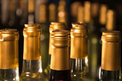 White Wine Bottles Lined-Up. Closeup of full & corked bottles of red and  white wine lined up in a row focusing on first one Royalty Free Stock Images