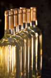 White Wine Bottles Lined-Up. Closeup of full & corked bottles of white wine lined up in a row focusing on first one Stock Photography