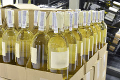 White wine in bottles Royalty Free Stock Photos