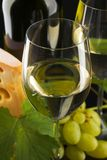 White wine and cheese on black Stock Photography