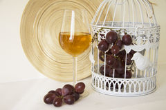 White wine and dark grapes Royalty Free Stock Images
