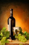 White wine with fresh grapes Stock Photography