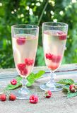 White wine with fresh raspberries. Raspberry cocktail Royalty Free Stock Photos