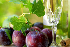 White wine and  fruits. Stock Photo