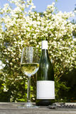 White wine in garden. White wine glass and bottle in garden Stock Photo