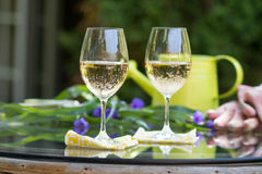 White Wine in the Garden for Break Time Stock Image