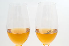 White wine in the glass Royalty Free Stock Photography