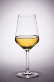 White Wine Glass. On concentric white to gray background royalty free stock images