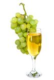 White wine glass on background of a grape stock photography