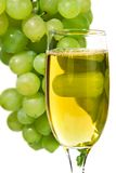 White wine glass on  background of a grape Stock Photo