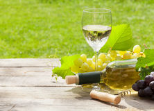 White wine glass and bottle with bunch of grapes Royalty Free Stock Photos