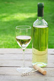 White wine. Glass and bottle in sunny garden Stock Photo