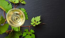 White wine glass and fresh grape leaves on black background, copy space stock photos