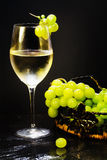 White wine glass with grapes bunch Royalty Free Stock Photo
