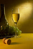 White wine in a glass and grapes Royalty Free Stock Image