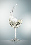 White wine glass on gray background Royalty Free Stock Photography