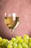 White wine in glass royalty free stock photos
