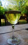 White Wine in  Glass Stock Images