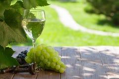 White wine glass with white grape Stock Photos