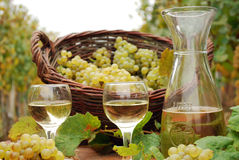 White wine and grape Royalty Free Stock Photography