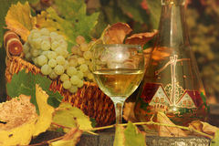 White wine and grape Stock Photography