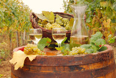 White wine and grape Royalty Free Stock Image
