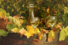 White wine and grape Royalty Free Stock Photo