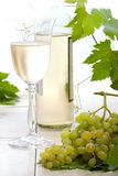 White wine and grapes Stock Photos