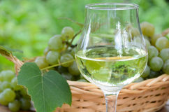 White wine with grapes Royalty Free Stock Images