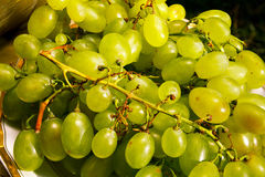 White wine grapes in a market Royalty Free Stock Images