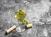 White wine from green fresh grapes. Stock Images