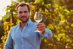 White wine in hand Stock Images