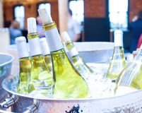 White wine on ice Royalty Free Stock Image
