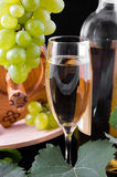 White wine over black Royalty Free Stock Photography