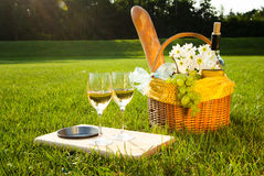 White wine and picnic on the grass. Picnic on the grass with white wine Royalty Free Stock Photography