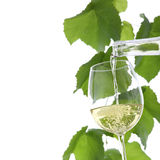 White wine pouring in a glass isolated Royalty Free Stock Photography