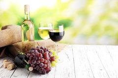 White wine and red wine in a glass with fall grapes, white wooden background.  stock photos