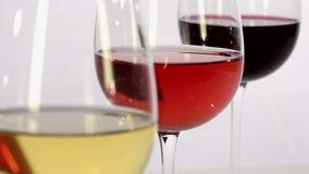 White wine, rosé wine and red wine. On white background with focus changes stock video footage