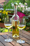 White wine served for two in garden Stock Photography