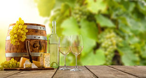 White wine served on wooden planks, vineyard on background Royalty Free Stock Images