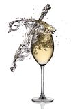White wine splash. Ing out of glass, isolated on white background royalty free stock image