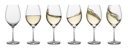 White wine splash collection royalty free stock images