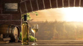 White wine tasting in the cellar Royalty Free Stock Photo