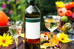 White wine on the terrace Stock Photography