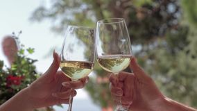 White wine toast stock video footage