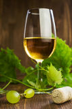 White wine with a vine Royalty Free Stock Photo