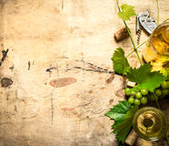 White wine with a vine . Royalty Free Stock Photography