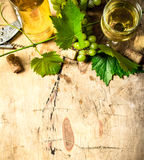 White wine with a vine . Royalty Free Stock Photo