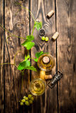 White wine in the vine. Stock Photography