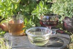 White wine vinegar Royalty Free Stock Photos
